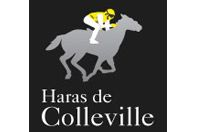 logo-haras-de-colleville.jpg