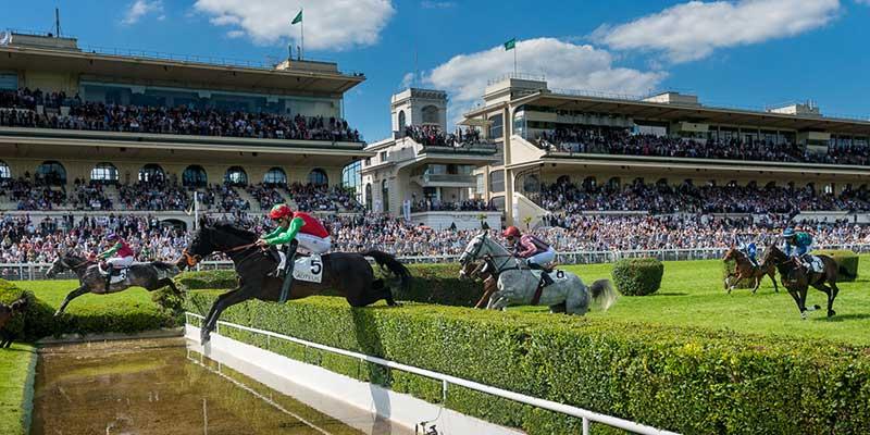 courses_chevaux6.jpg