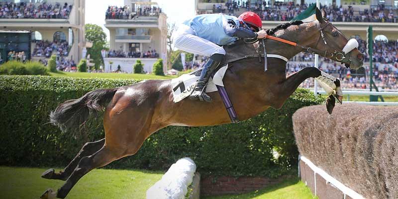 5c6c9fa303785_courses_chevaux3.jpg