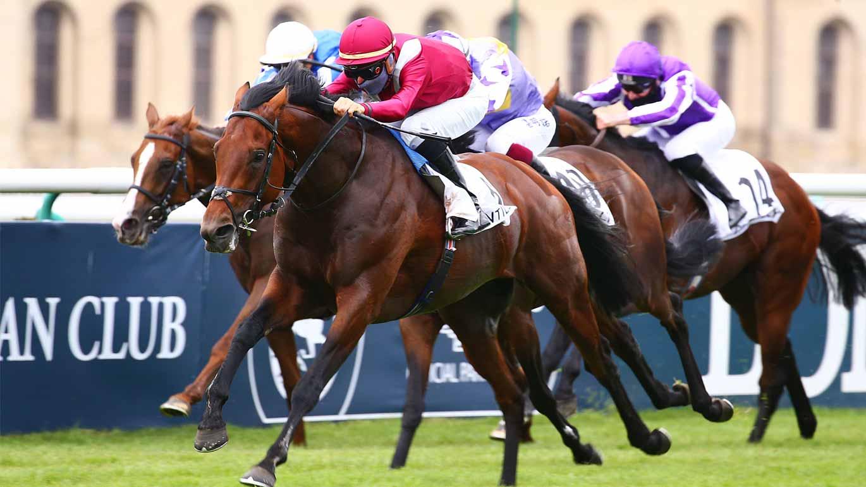 Sponsor-Qatar-Prix-du-Jockey-Club-desktop.jpg